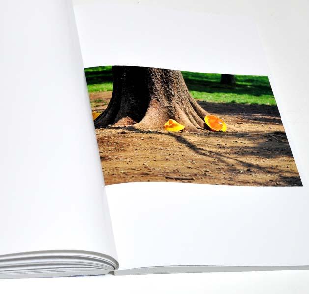 t-book-9
